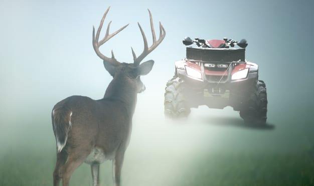 What Happens At Deer Camp...